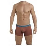 2394 Attractive Boxer Briefs Color Brown