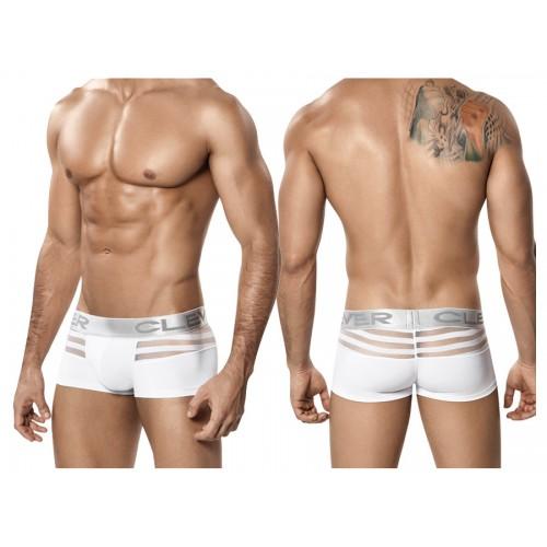 2210 Ammolite Latin Boxer Color White