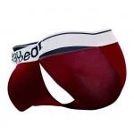 EW0915 MAX Modal Bikini Color Burgundy