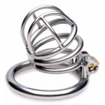 The Pen Deluxe Stainless Steel Locking Chastity Cage
